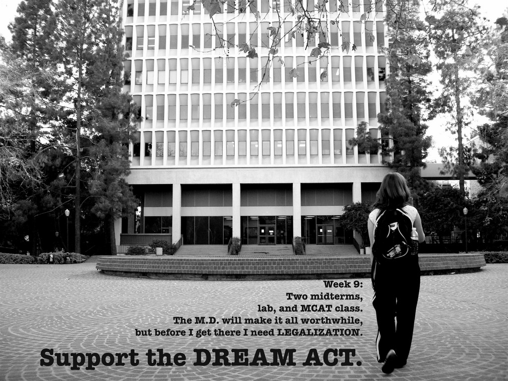 DREAM Act: A Reality